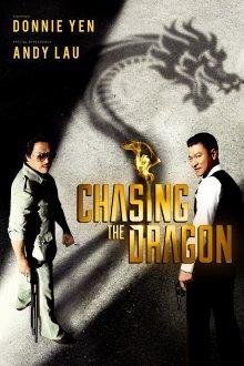 постер к фильму В погоне за драконами