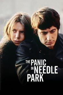 постер к фильму Паника в Нидл-парке