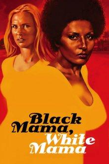постер к фильму Черная мама, белая мама
