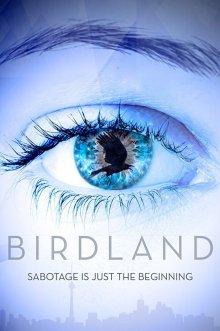 постер к фильму Земля птиц