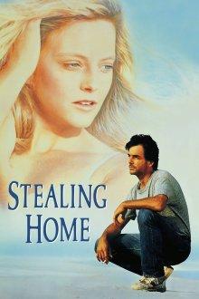 постер к фильму Украсть дом