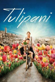 постер к фильму Тюльпаны: любовь, честь и велосипед