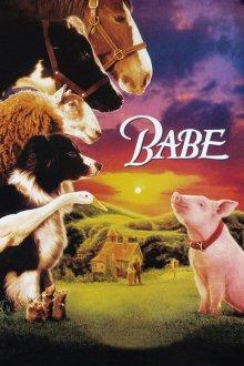 постер к фильму Бэйб: Четвероногий малыш
