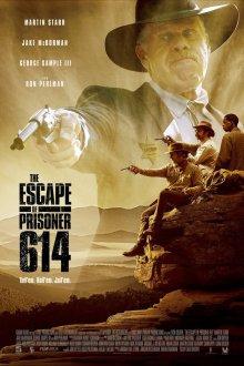 постер к фильму Побег заключённого 614