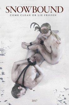 постер к фильму Снежные связи