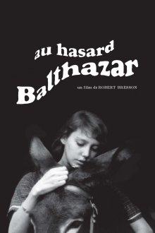 постер к фильму Наудачу, Бальтазар