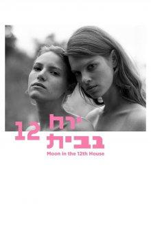 постер к фильму Луна в двенадцатом доме