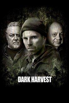 постер к фильму Последний урожай