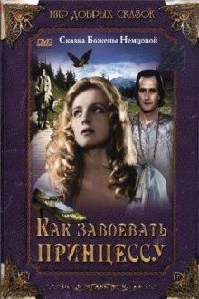 постер к фильму Как завоевать принцессу