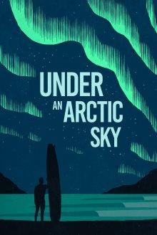 постер к фильму Под арктическим небом