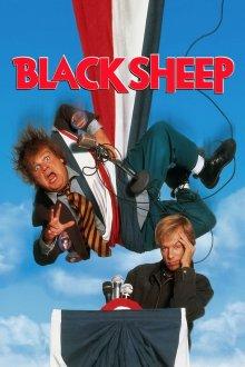 постер к фильму Паршивая овца