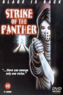 постер к фильму Удар пантеры