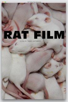 постер к фильму Крысы