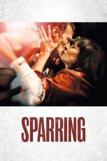 постер к фильму Спарринг