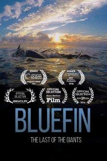 постер к фильму Голубой тунец