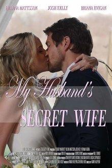 постер к фильму Тайная жена моего мужа