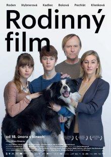 постер к фильму Семейный фильм