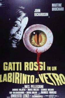 постер к фильму Гляди в оба