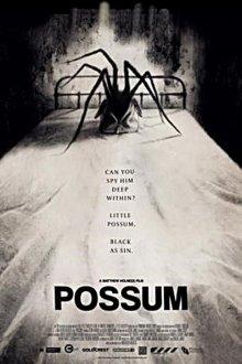 постер к фильму Опоссум