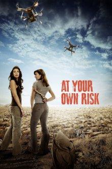 постер к фильму На свой страх и риск