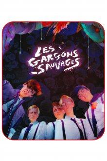 постер к фильму Дикие мальчишки