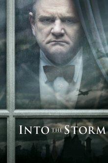 постер к фильму Навстречу шторму