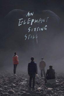 постер к фильму Слон сидит спокойно