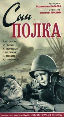 постер к фильму Сын полка