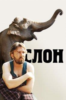 постер к фильму Слон
