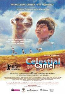 постер к фильму Небесный верблюд