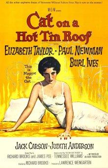 постер к фильму Кошка на раскаленной крыше